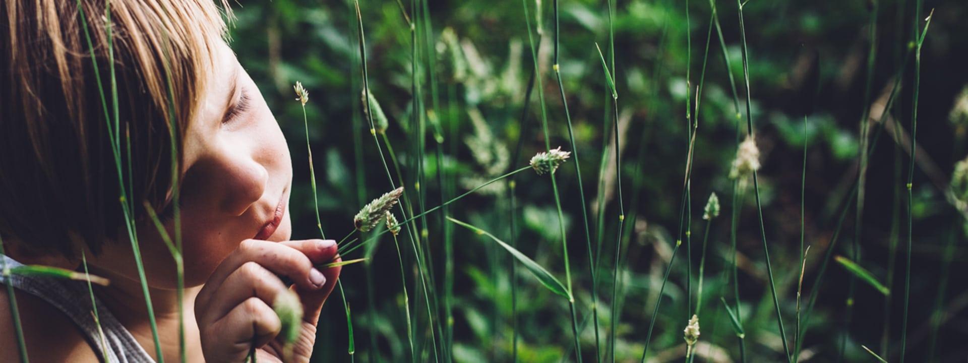 Nature Play SA Home Image