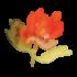 NPSA Web Watercolour Plant elements 2 300px